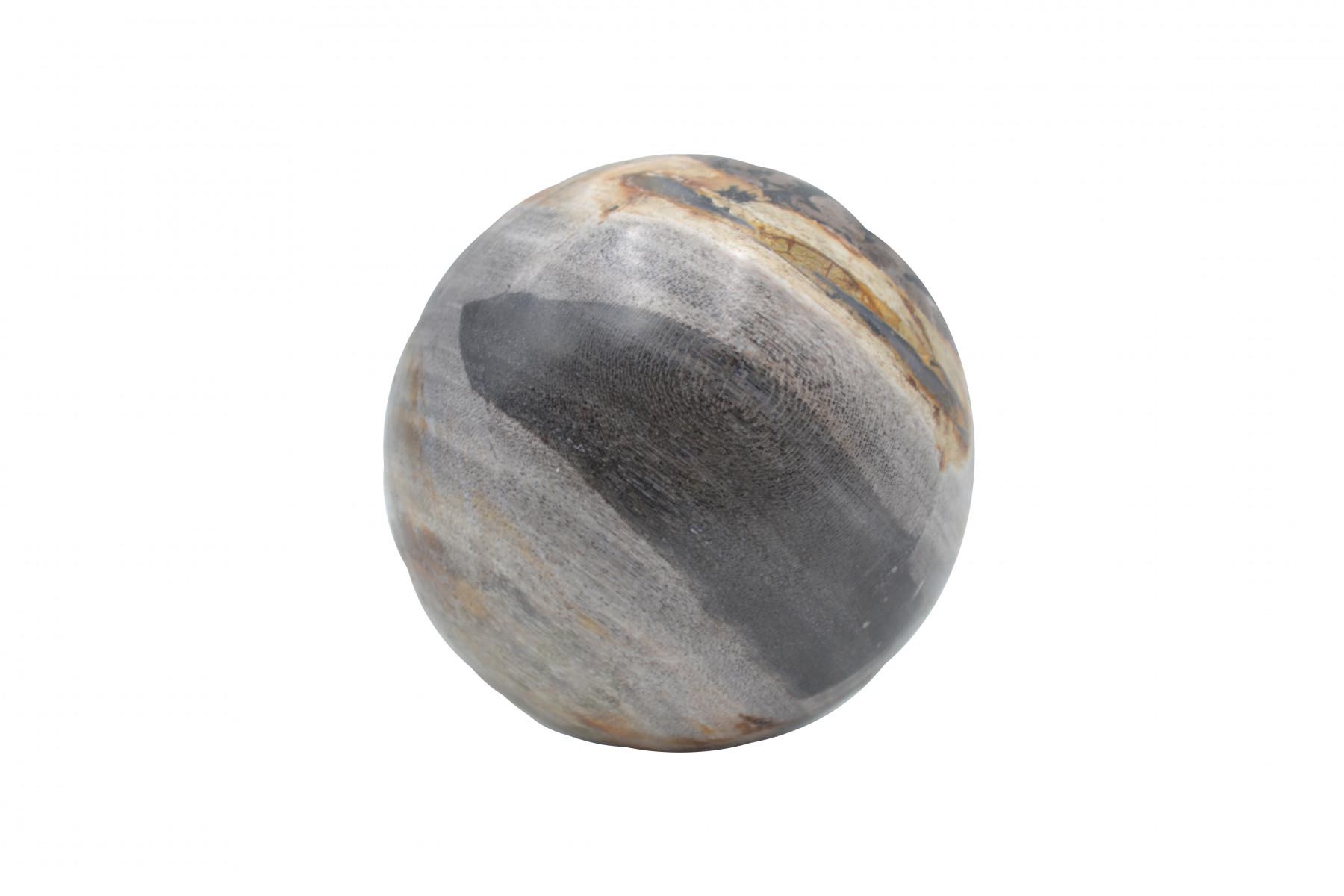 Boule de bois pétrifié 1